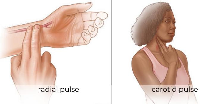 Checking Your Pulse - Interoception Activities for Kids