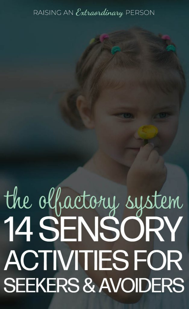 The Olfactory System  AKA The Sense of Smell - 14 Sensory Activities for Sensory Seekers and Sensory Avoiders // #SPD #SensoryDiet #SensoryActivities #SensoryPlay #PlayTherapy #ASD #Autism #ADHDKids #ActivitiesForKids