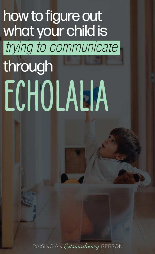 What is your child communicating with echolalia? 12 possible communications your child is making based on the work of expert Barry M Prizant. #Autism #Echolalia #SLP #ABA